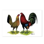 American Gamefowl Pair Postcards (Package of 8)