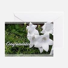 Balloon Flower Congratulations Cards 5x7 (20 Pk)