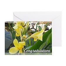 Canna Lily Congratulations Card 5x7