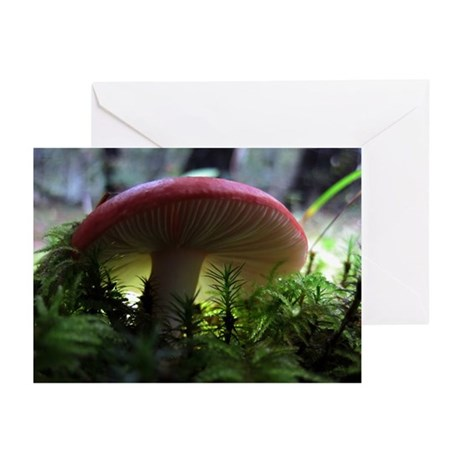 Red Mushroom in Forest Greeting Cards (Pk of 10)