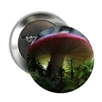 Red Mushroom in Forest 2.25