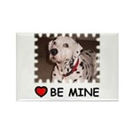 DALMATION (BE MINE) Rectangle Magnet (100 pack)