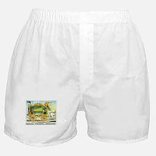 The Wonderful Operonicon Boxer Shorts