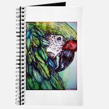 Amazon, Green Parrot Journal
