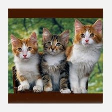 3 Cats Tile Coaster