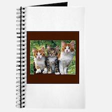 3 Cats Journal