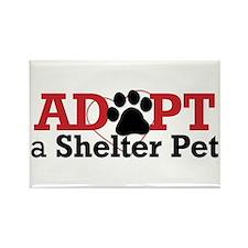Adopt a Shelter Pet Rectangle Magnet