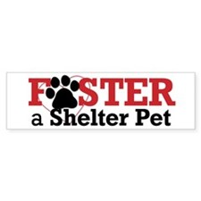 Foster a Pet Bumper Bumper Sticker