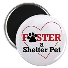 Foster a Pet Magnet