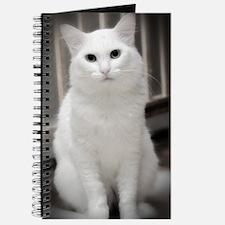 White Cat Journal