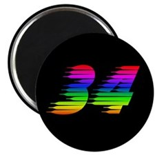 34 Rainbow Magnet