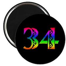 "34 Rainbow 2.25"" Magnet (10 pack)"