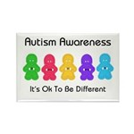 Autism Ok Difference Rectangle Magnet (10 pack)