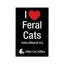 I Heart Feral Cats rectangle magnet