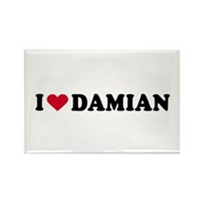 I LOVE DAMIAN ~ Rectangle Magnet