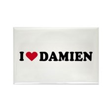 I LOVE DAMIEN ~ Rectangle Magnet