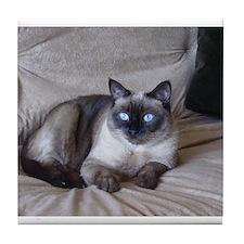 Unique Siamese cats Tile Coaster