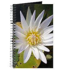 Lotusflower (Lotus Flower) Journal / Notebook