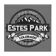Estes Park Grey Tile Coaster