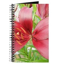 Red Asiatic Lily Journal / Notebook