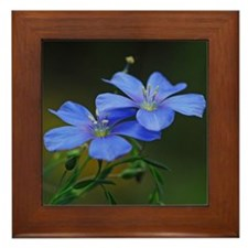 Blue Flowers Framed Tile