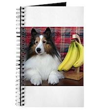 Cute Pet valentines Journal