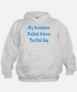 Red Sea Passover Hoodie