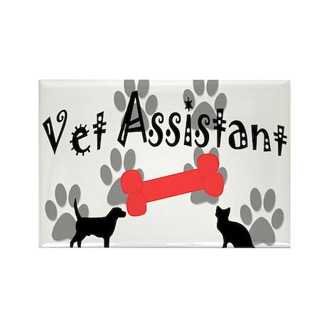 Veterinary Rectangle Magnet (10 pack)