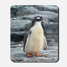 Dreamy Baby Penguin Mousepad