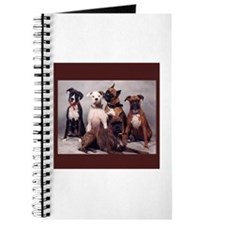 Boxers Journal