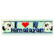 Himalayan Kitty Bumper Bumper Sticker