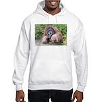 The Sage Hooded Sweatshirt