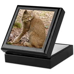 Siberian Lynx Keepsake Box