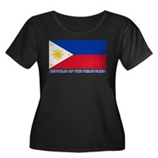 Philippines Flag (labeled) T