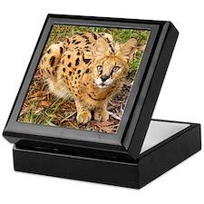 Serval Keepsake Box