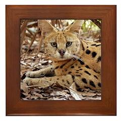 Serval Framed Tile