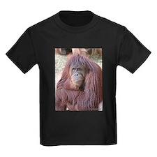 Orangutan - Good Day T