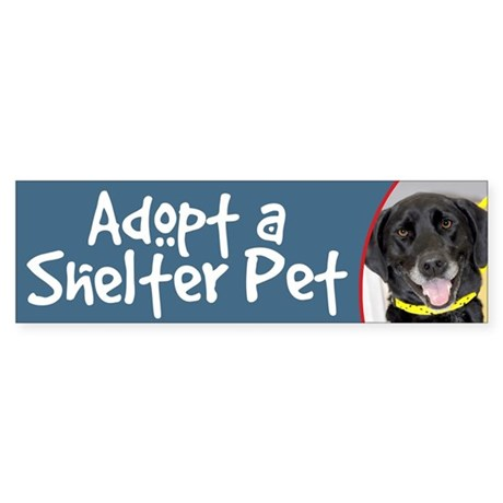 Adopt a Shelter Pet Black Lab Bumper Sticker