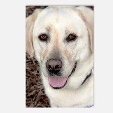 White Labrador Retriever Postcards (Package of 8)