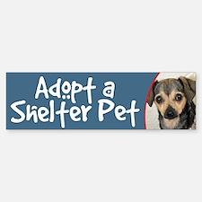 Adopt a Shelter Pet Bumper Sticker - Chihuahua Mix