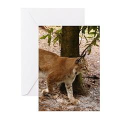 Siberian Lynx Greeting Cards (Pk of 20)