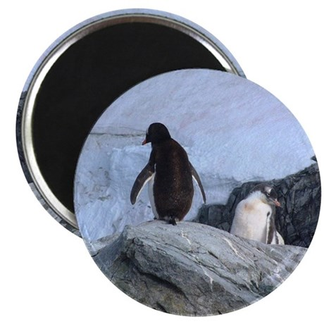 Be My Valentine Penguin Magnet