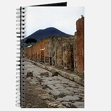 Mt. Vesuvius & Pompeii Journal