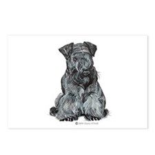 Cesky Terrier Postcards (Package of 8)