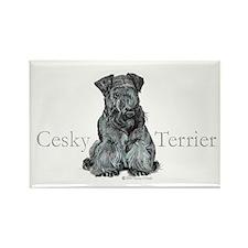 Cesky Terrier Rectangle Magnet (10 pack)