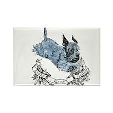 Cesky Agility Terrier Rectangle Magnet (100 pack)