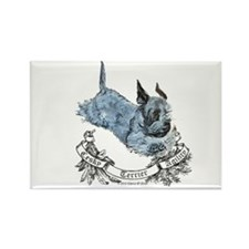 Cesky Agility Terrier Rectangle Magnet (10 pack)