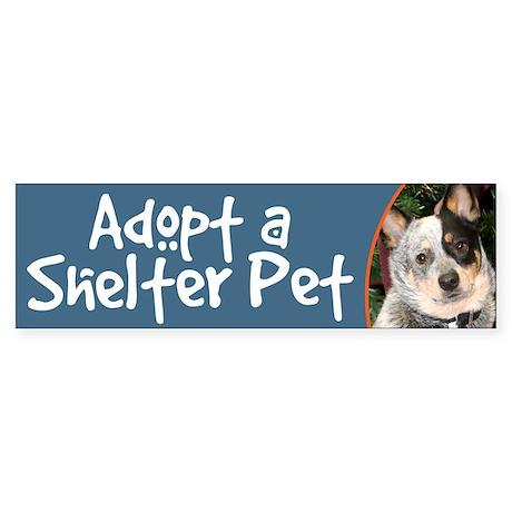 Adopt a Shelter Pet Cattle Dog Bumper Sticker