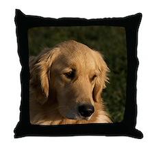 Golden Retriever Head Throw Pillow