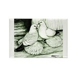 Ice Pigeons Rectangle Magnet (10 pack)